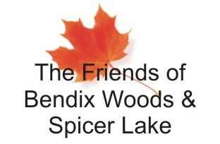 Friends of Bendix Woods and Spicer Lake logo